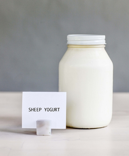 *Sheep Yogurt