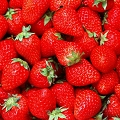 Pureed strawberries<br>Per pint